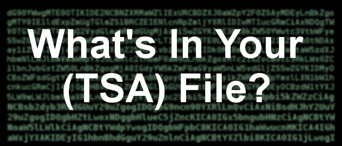 What's in your TSA File?